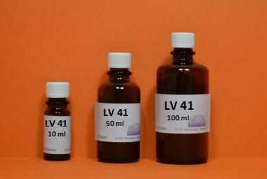 LV 41 - Lösungsvermittler